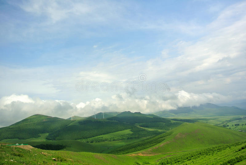 Hilly grassland stock image
