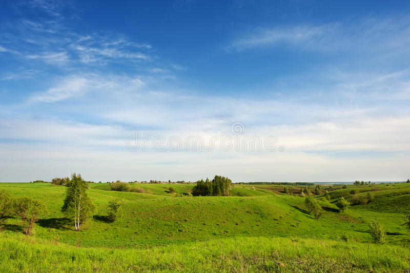 Hilly green meadow and clouds in the sky. Hilly meadow, bright green spring grass, rare small trees and clouds in the blue sky in a sunny clear weather stock photography