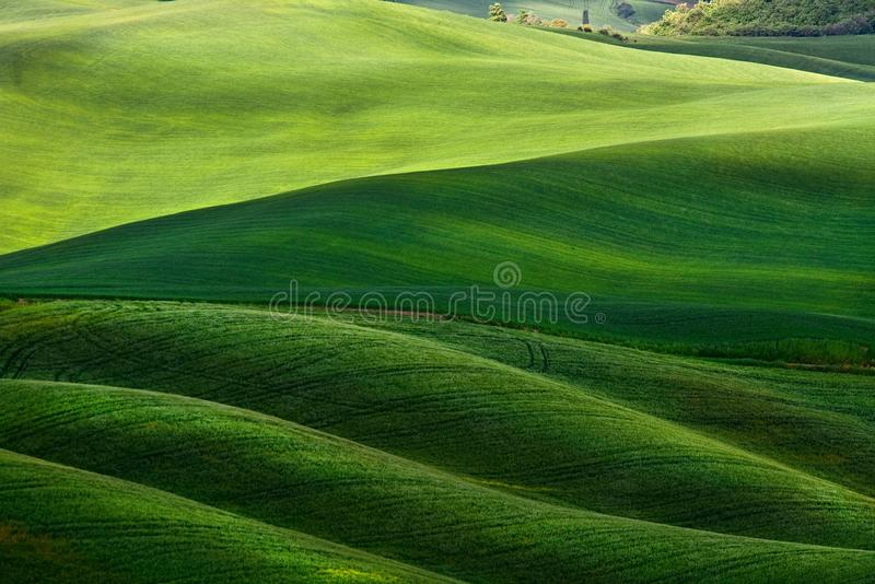 Hilly Landscape Of Tuscany Royalty Free Stock Photography