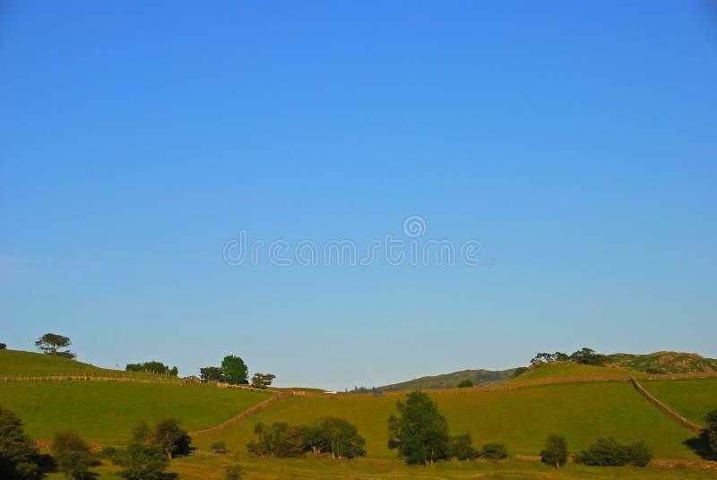 Hilly Silky Grassland com árvores e portas no distrito do lago foto de stock royalty free