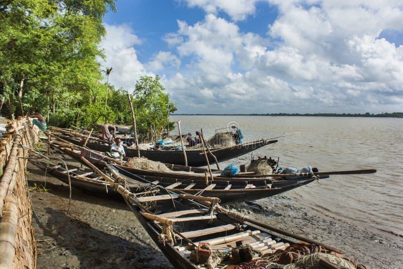 Hilsha Fish. Ing at the Rupsa River.  is the national fish of Bangladesh. This is near the Khulna,Bangladesh royalty free stock image