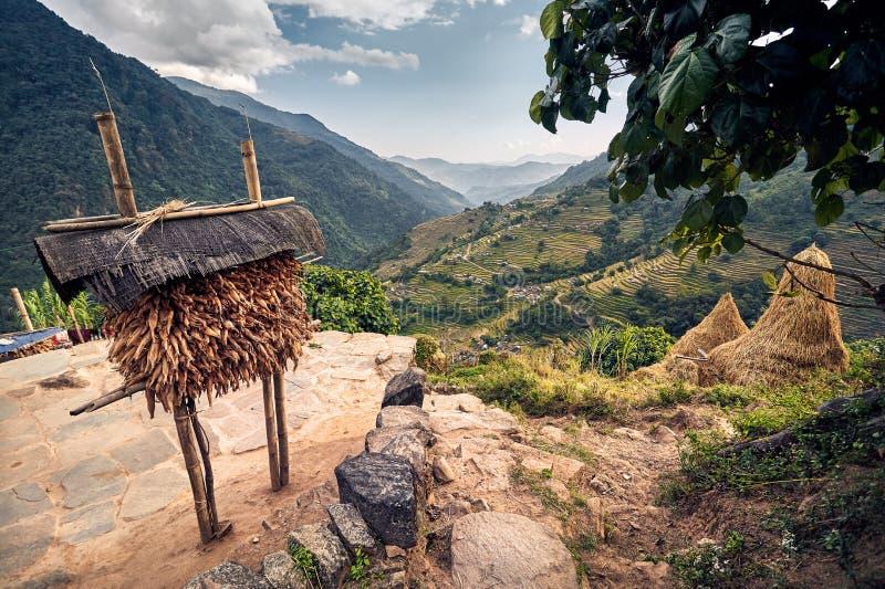 himachal село долины spiti pradesh Индии Гималаев стоковое фото rf