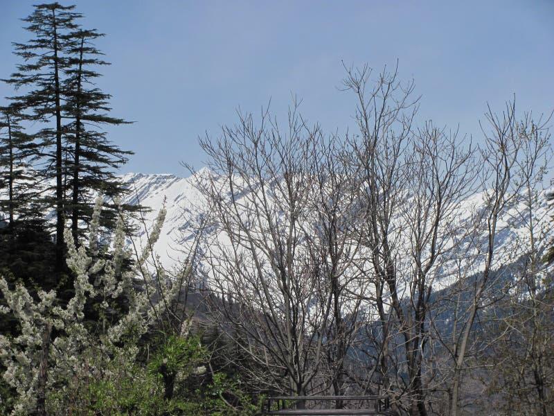 Himachal Pradesh é realmente nevado!! imagens de stock royalty free