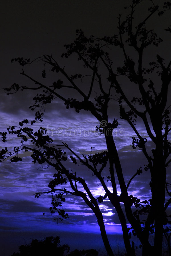 himachal silhouetted moonrise Индии стоковое фото rf