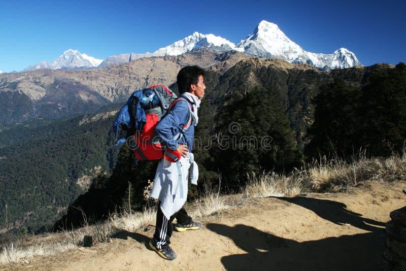 Himalajasherpa lizenzfreie stockbilder
