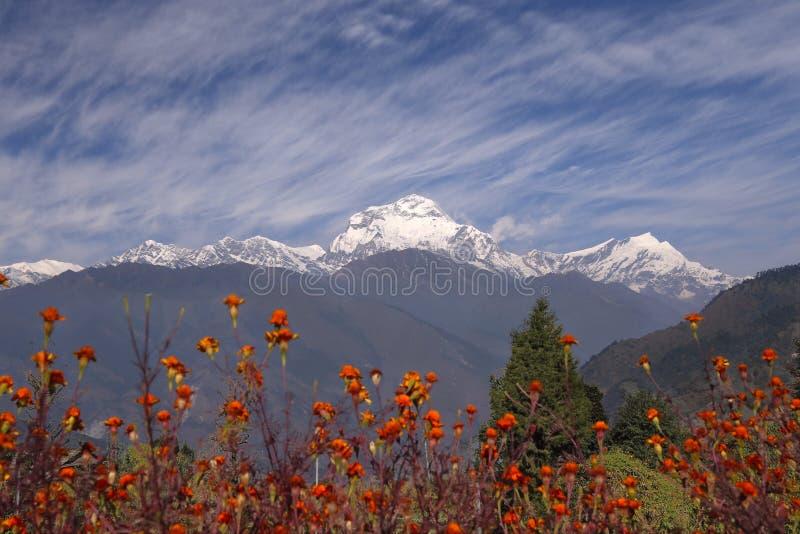Download Himalaje Nepal obraz stock. Obraz złożonej z target24 - 41952003