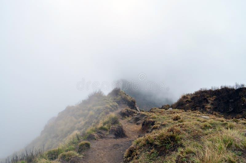 Himalajska halna droga w mgle Mgłowy himalajski sposób Nepal, Annapurna region obraz royalty free
