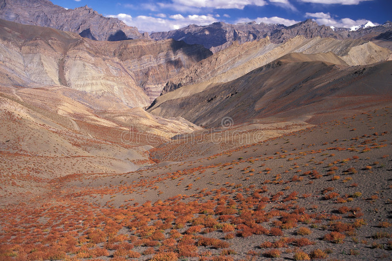 Himalaya Autumn. Autumn in Zanskar Mountains, Ladakh, India royalty free stock image