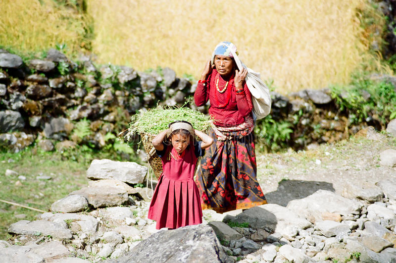 Download Himalaya Child Porter, Nepal Editorial Photography - Image: 12926482