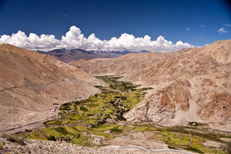 himalayan κοιλάδα της Ινδίας ladakh στοκ εικόνα με δικαίωμα ελεύθερης χρήσης