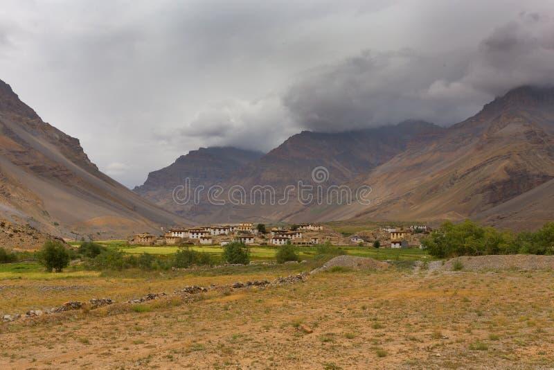 Himalayan by royaltyfri foto