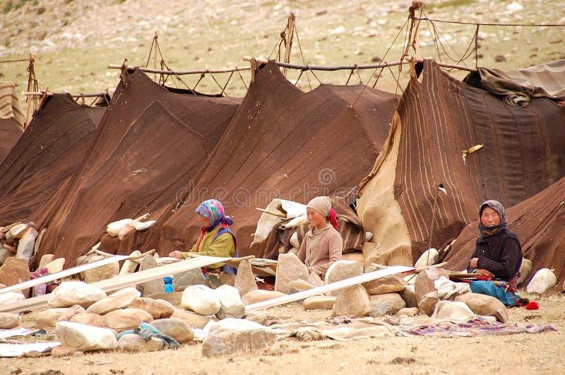Himalayan nomads royalty free stock images