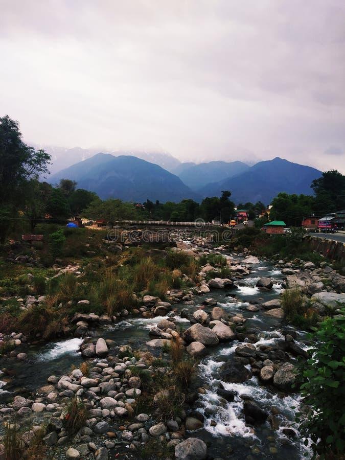 Himalayan originele schoonheid stock fotografie