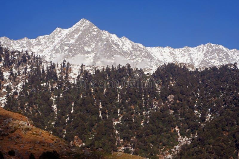 Download Himalayan SnowTrekking Routes Triund Kangra India Stock Photo - Image of destination, holiday: 12447516