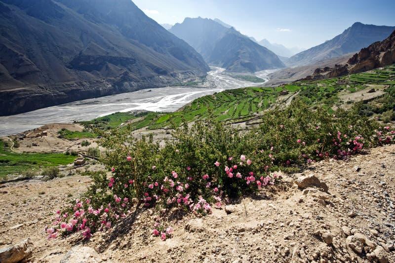 Download Himalayas stock image. Image of asia, climbing, range - 26591525
