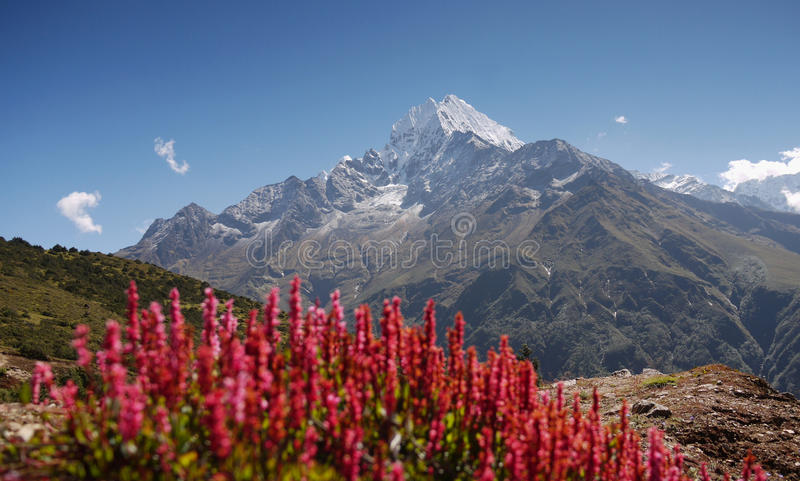 Himalayas royalty free stock photo