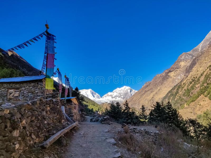 Himalayas and Prayer flags. Trekking trail of Manaslu Conservation Area in Nepal. yellow trees royalty free stock image