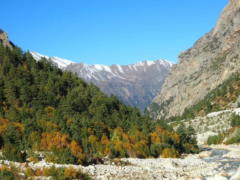 Himalayas sacrais Gangotri imagens de stock
