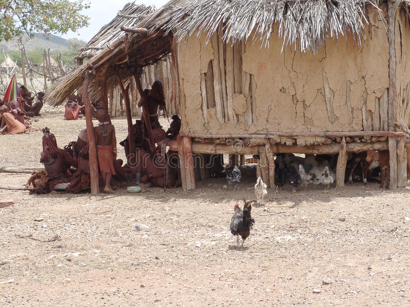 Himba。当地非洲peolple 库存照片