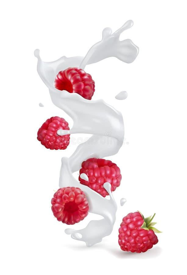 Himbeerbeeren mit einem Spritzen des Joghurts oder der Milch lizenzfreie abbildung