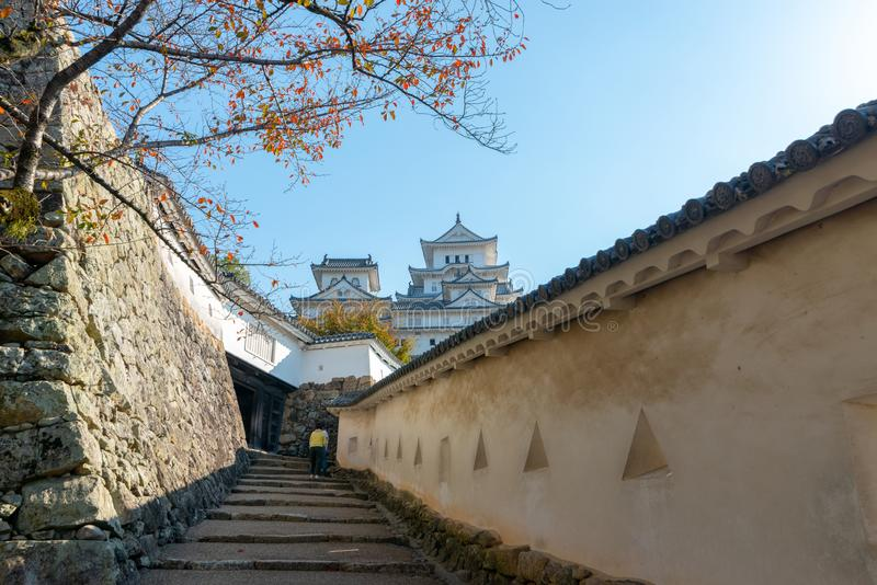 Himeji castle in the background with cherry trees tree during au royalty free stock photos
