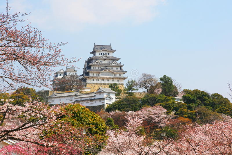 The Himeji Castle, Japan. Spring cherry blossoms and the main tower of the famous Himeji Castle, also called the white heron castle, surrounded by Sakura cherry stock images