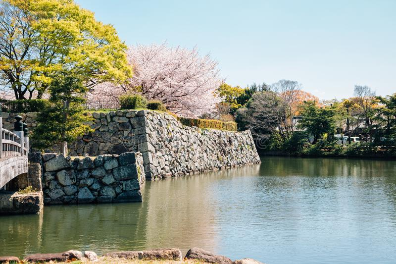 Himeji Castle park, canal and cherry blossoms at spring in Japan. Asia royalty free stock images