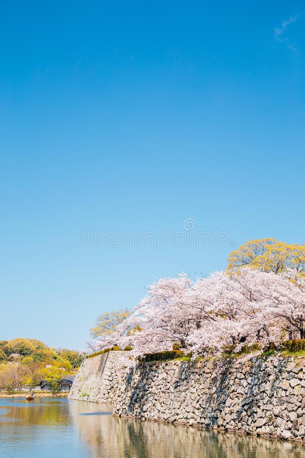 Himeji Castle park, canal and cherry blossoms at spring in Japan. Asia stock photos