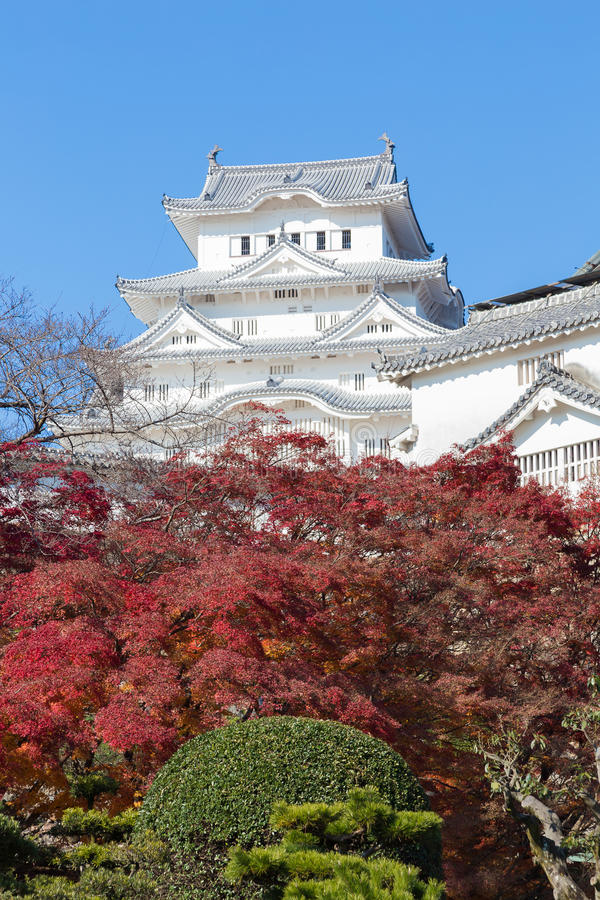 Himeji Castle with red leaves front view. With blue sky background, Japan royalty free stock image