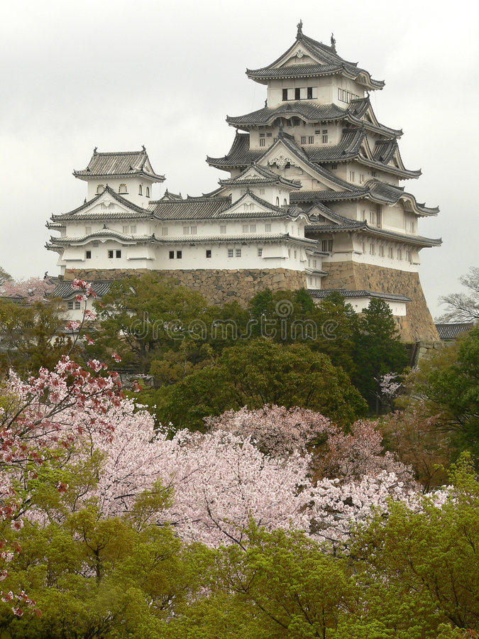 Himeji Castle in spring with cherry blossoms, Japan stock image