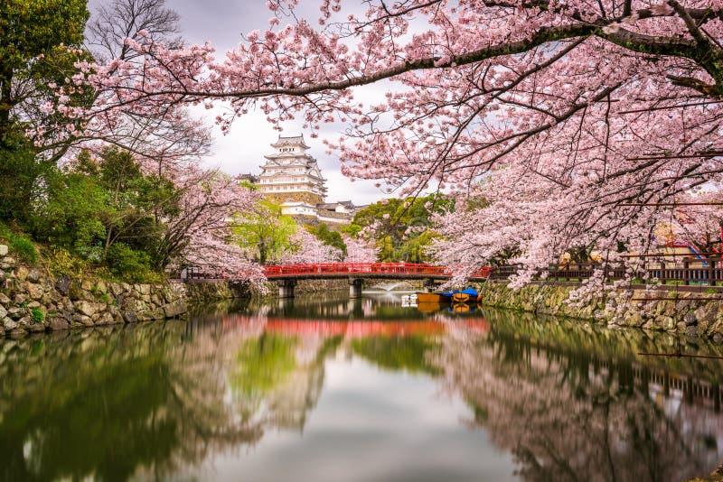 Himeji kasztel, Japonia w wiośnie obraz stock
