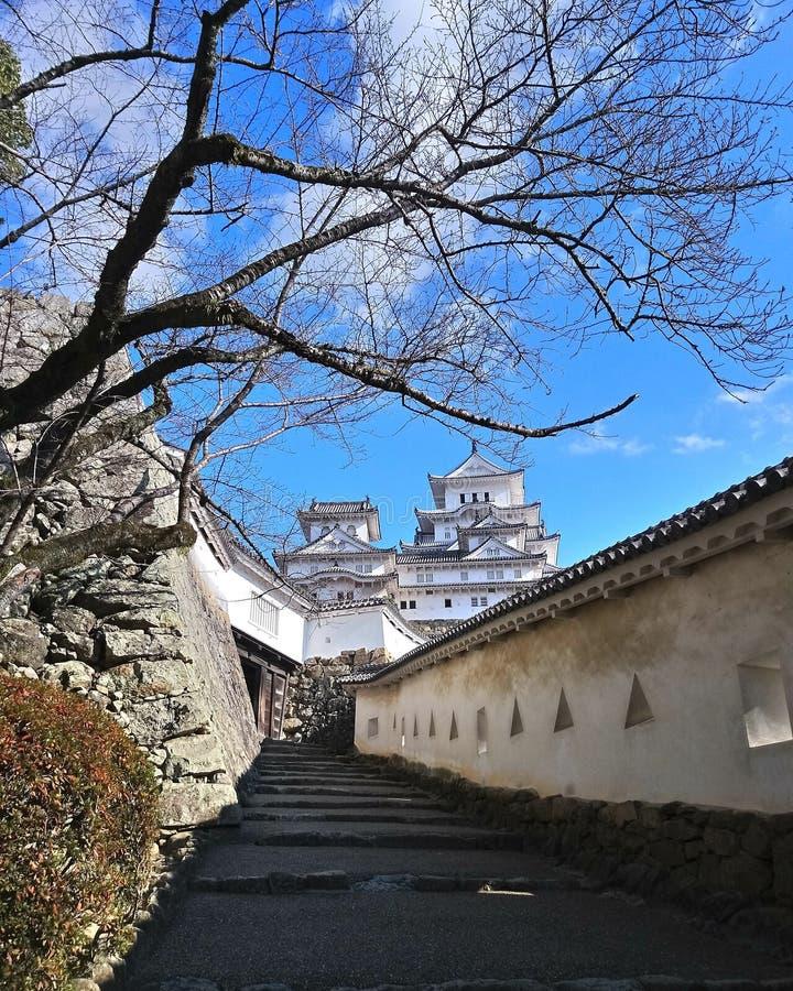 Himeji-Schloss, ausgezeichnet aufgestellt lizenzfreies stockbild
