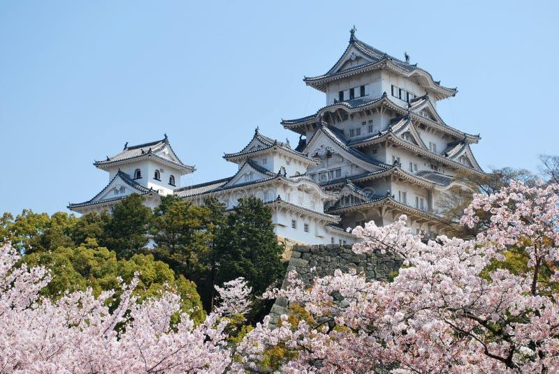 Himeji-Schloss während der Kirschblüte lizenzfreie stockfotografie