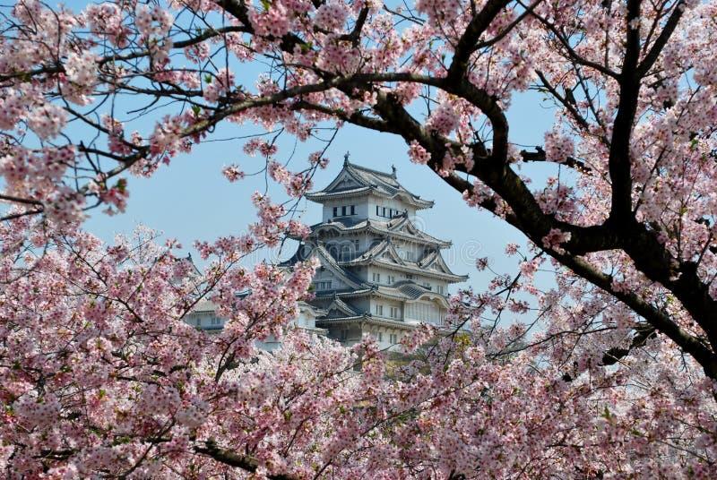 Himeji-Schloss während der Kirschblüte lizenzfreie stockfotos