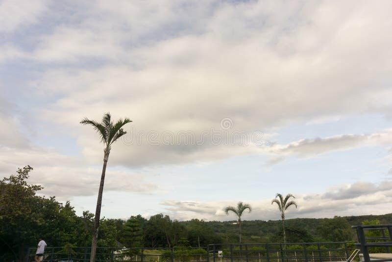 Himlar över en simbassäng arkivfoton