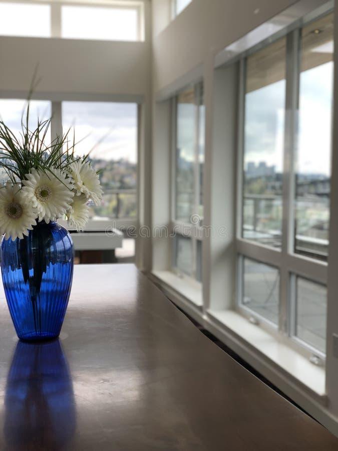 Himlar av en Seattle lägenhet royaltyfria foton