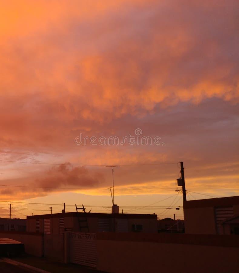 Himlar för mango för Puerto Rico ` s arkivfoton