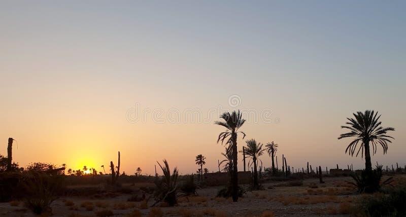Himlen och solnedgången arkivfoto