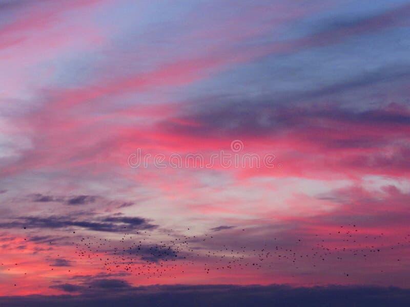 Himlen på gryning arkivfoton