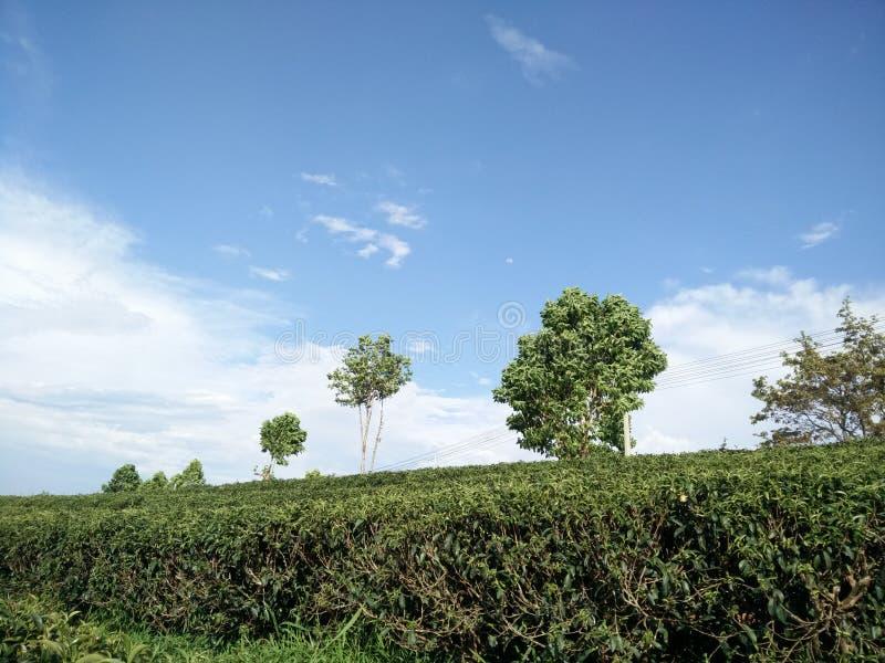 himmel stockfoto