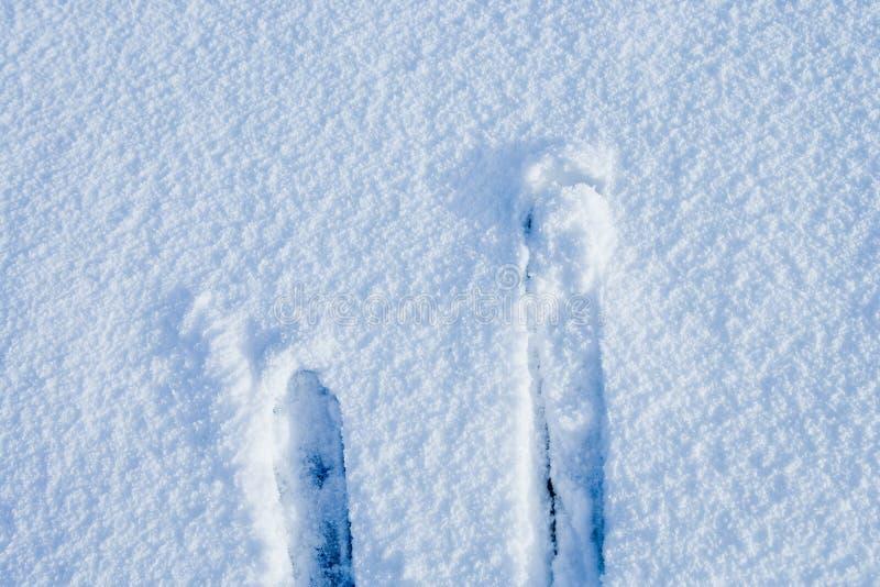 Himmel im Schnee lizenzfreies stockfoto