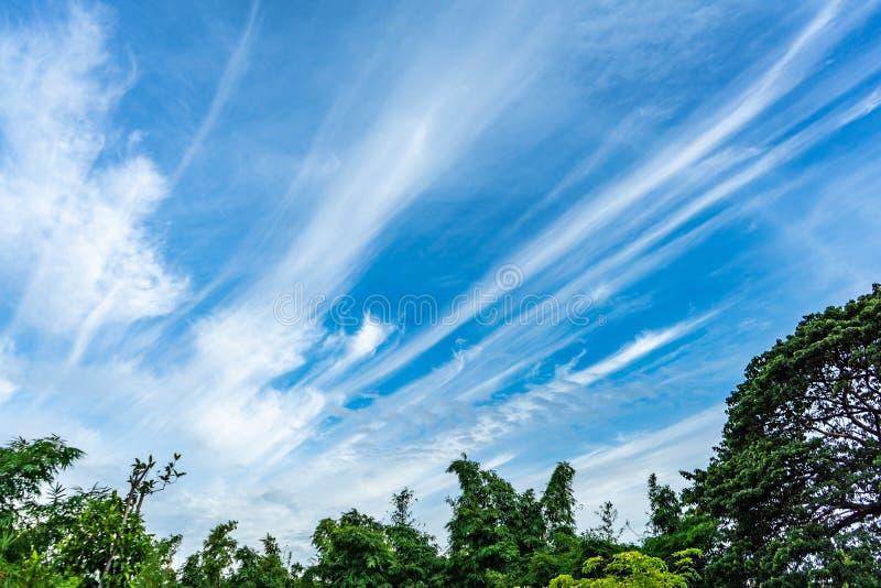 Himmel mit selten Wolke in der Linie Form stockfoto