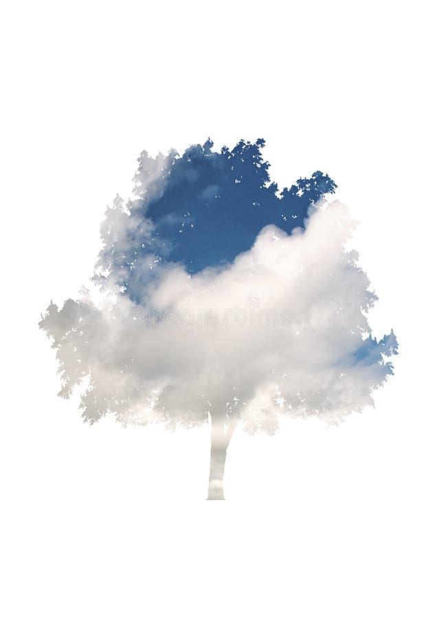 Himmel- och molnsamkopiering på ett lövrikt träd royaltyfri foto