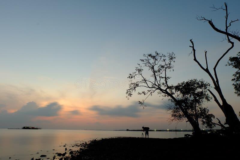 Himmel och träd och folk fotografering för bildbyråer