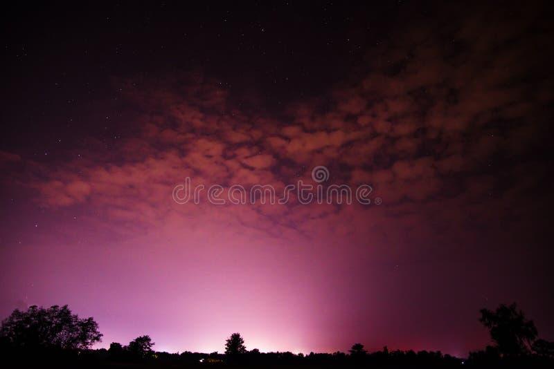 Himmel på nattlilor royaltyfri bild