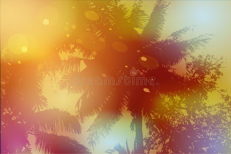 Himmel, Palmen, Sonnenuntergang, Sonnengreller glanz Vektor lizenzfreie abbildung