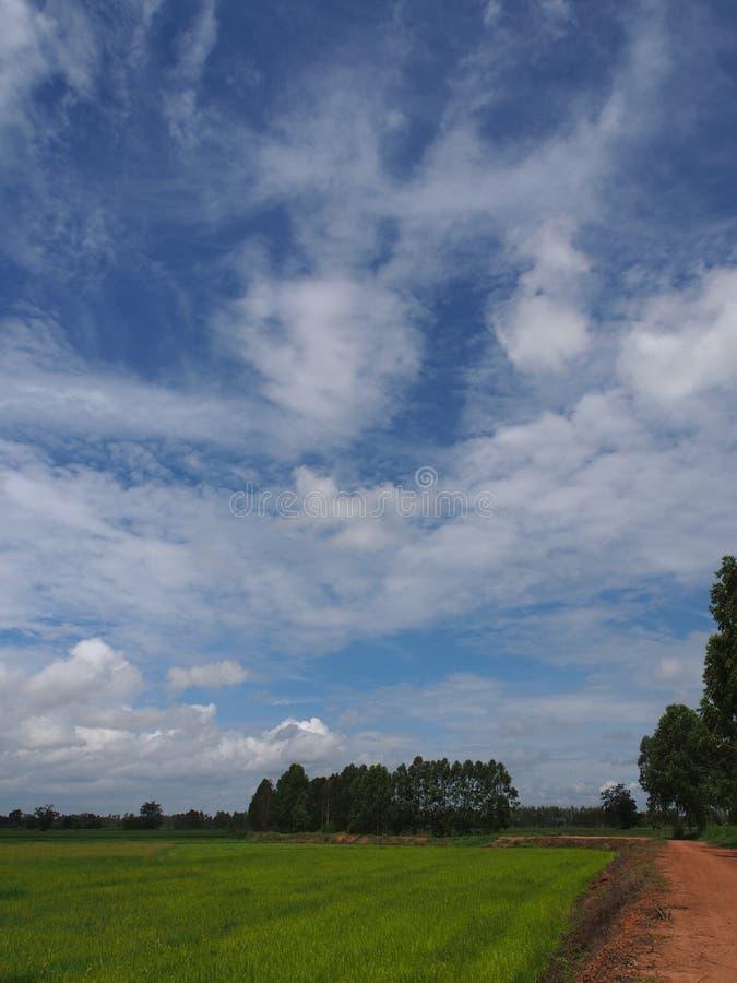 Himmel am sonnigen Tag lizenzfreie stockfotos