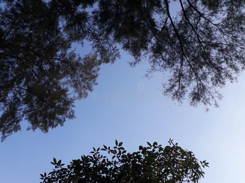 Himmel, Strand Hafen Dickson Malaysia lizenzfreies stockbild