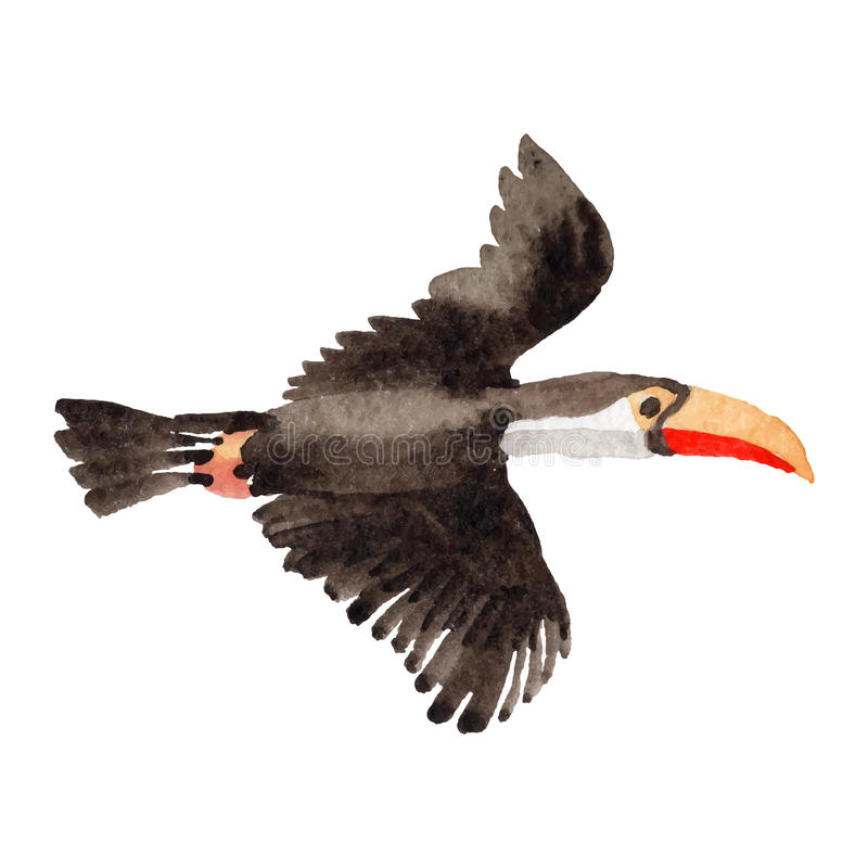 Himmelfågeltukan i ett isolerat djurliv vid vektorstil stock illustrationer
