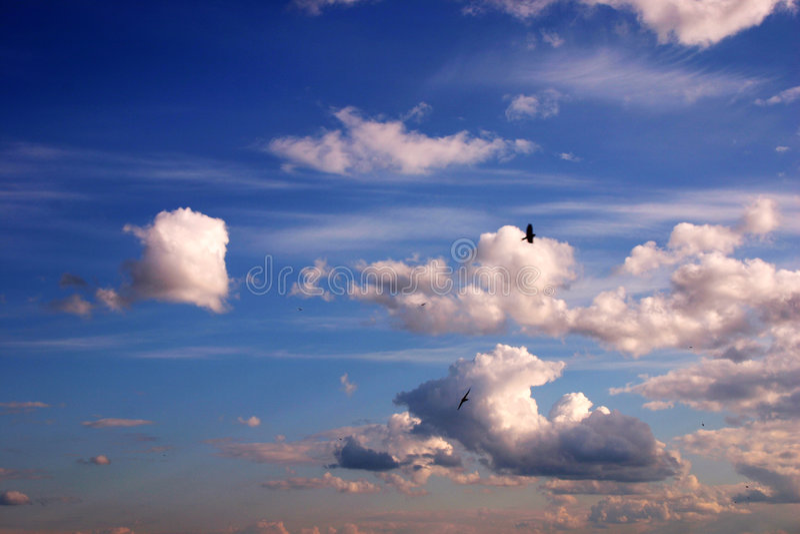 Download Himmelhintergrund stockbild. Bild von wolke, tageslicht - 47113